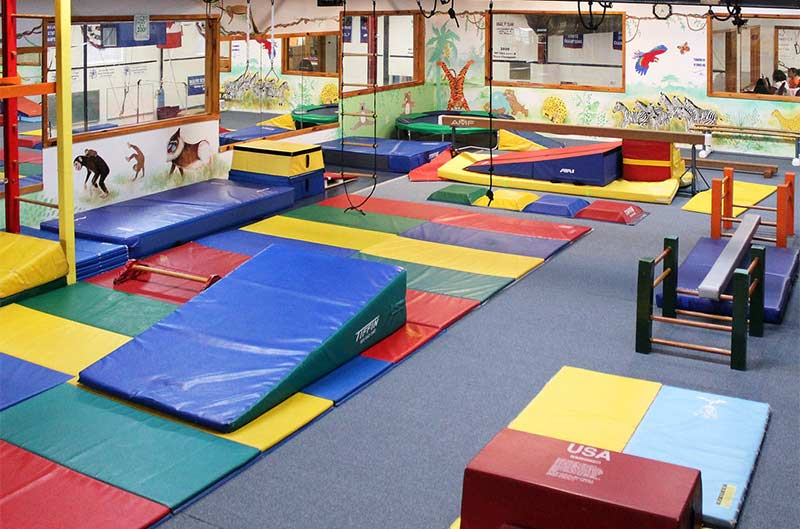 The Jungle - state-of-the-art youth gymnastics facility